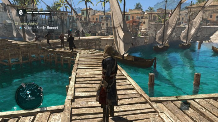 Assassin's Creed IV (4)