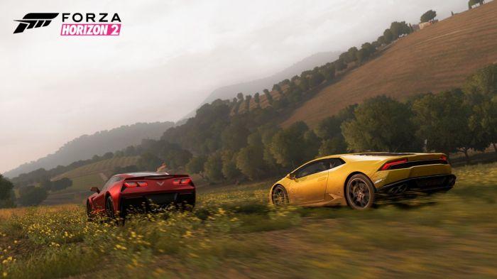 Forza Horizon 2 (2)